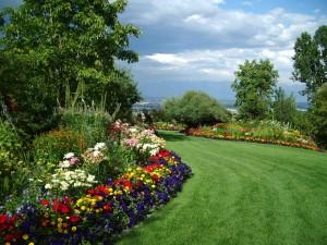 mind like a garden