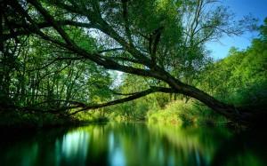 christian meditation waterfall1