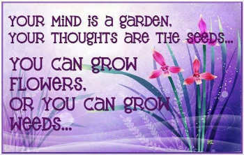 mind like garden