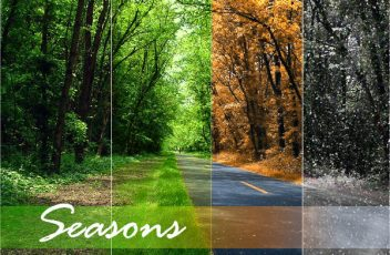 Discovering Our Season in Life
